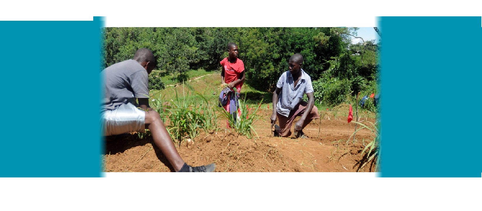 Youth Planting Leeks, Haiti - Photo by USAID