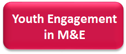 Youth Engagement in M&E
